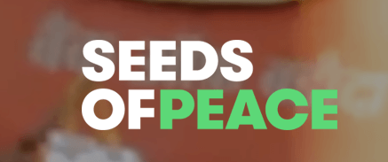 seeds of peace זרעים של שלום